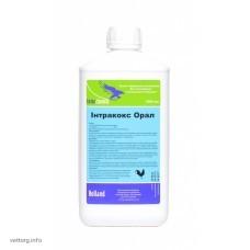 Інтракокс Орал, 1 л. (Interchemie)